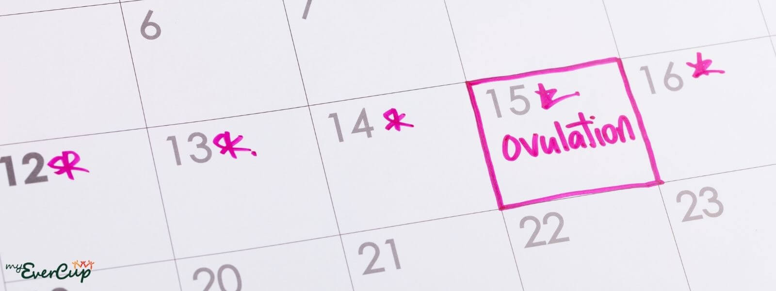 can you get pregnant on your period calendar