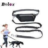 Multi Function Dog Running Leash Belt