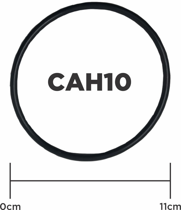 O Ring for CAH10 Filter Housings
