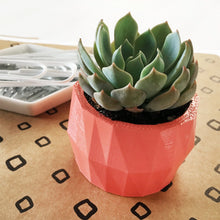 Load image into Gallery viewer, Mini Geometric Planter