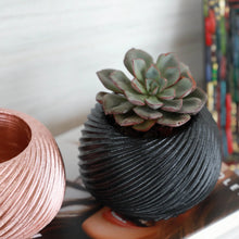 Load image into Gallery viewer, Small Swirl Planter with Succulent