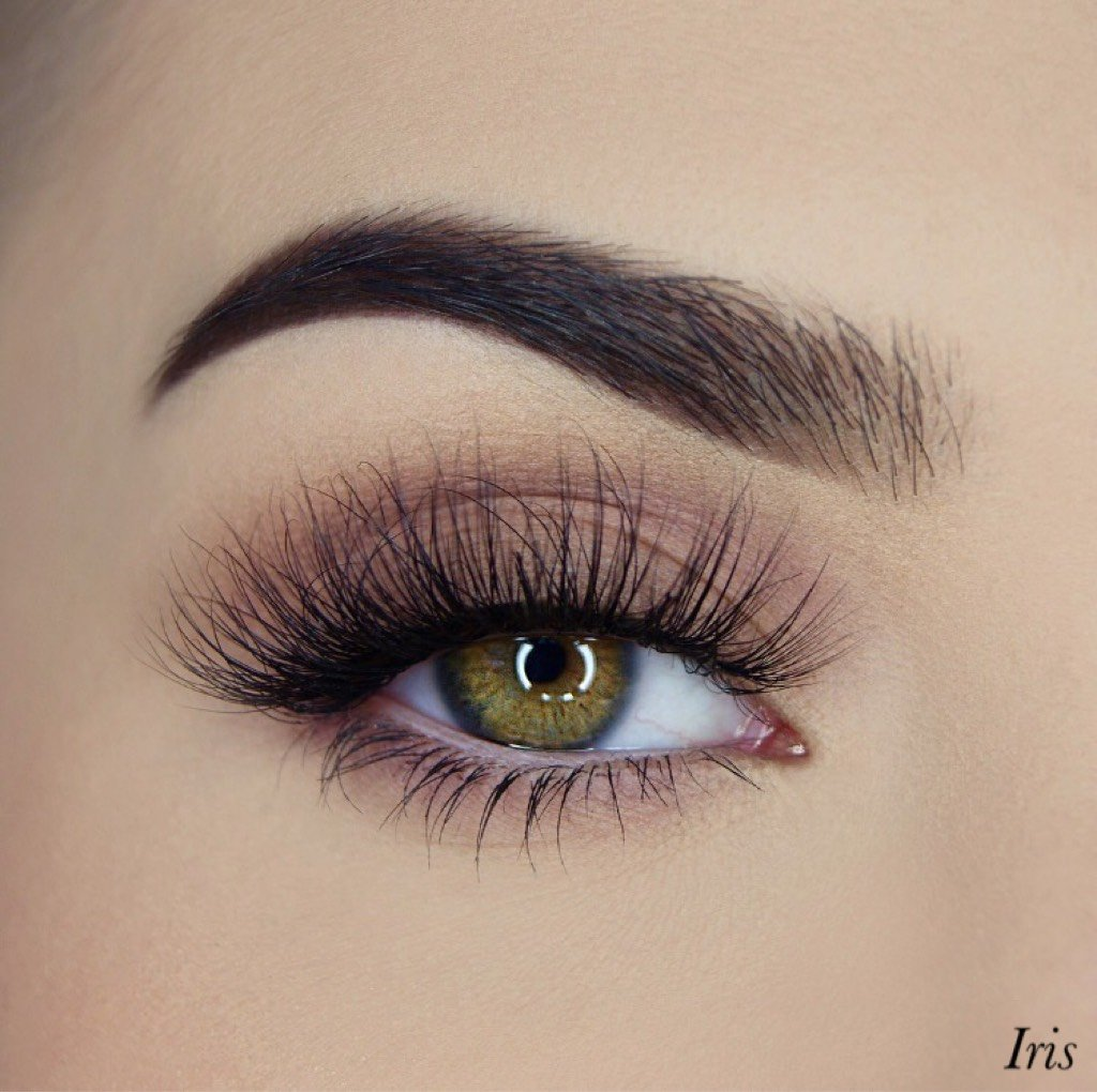 Iris 3D Premium Lash (invisible band)