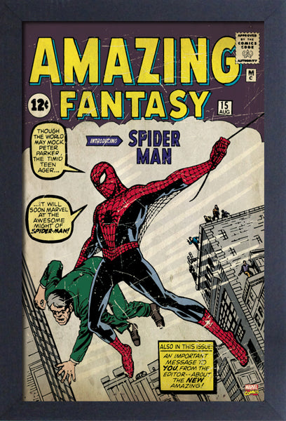 Spider-Man - Fantasy Cover 11x17 Framed Print