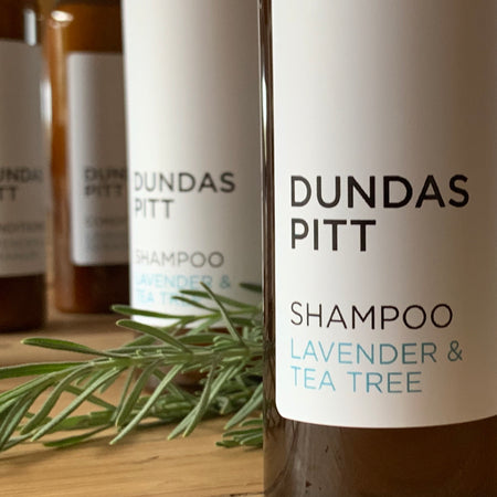 Shampoo - Lavender & Tea Tree