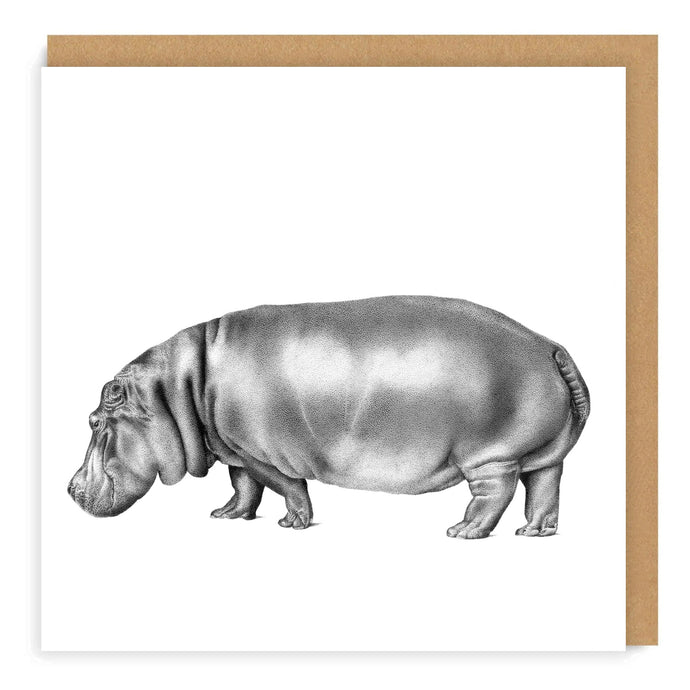 Kiboko (Hippo) - Greeting Card