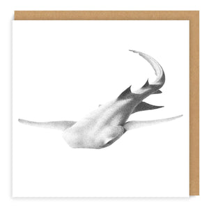 Tawny Nurse Shark - Greeting Card