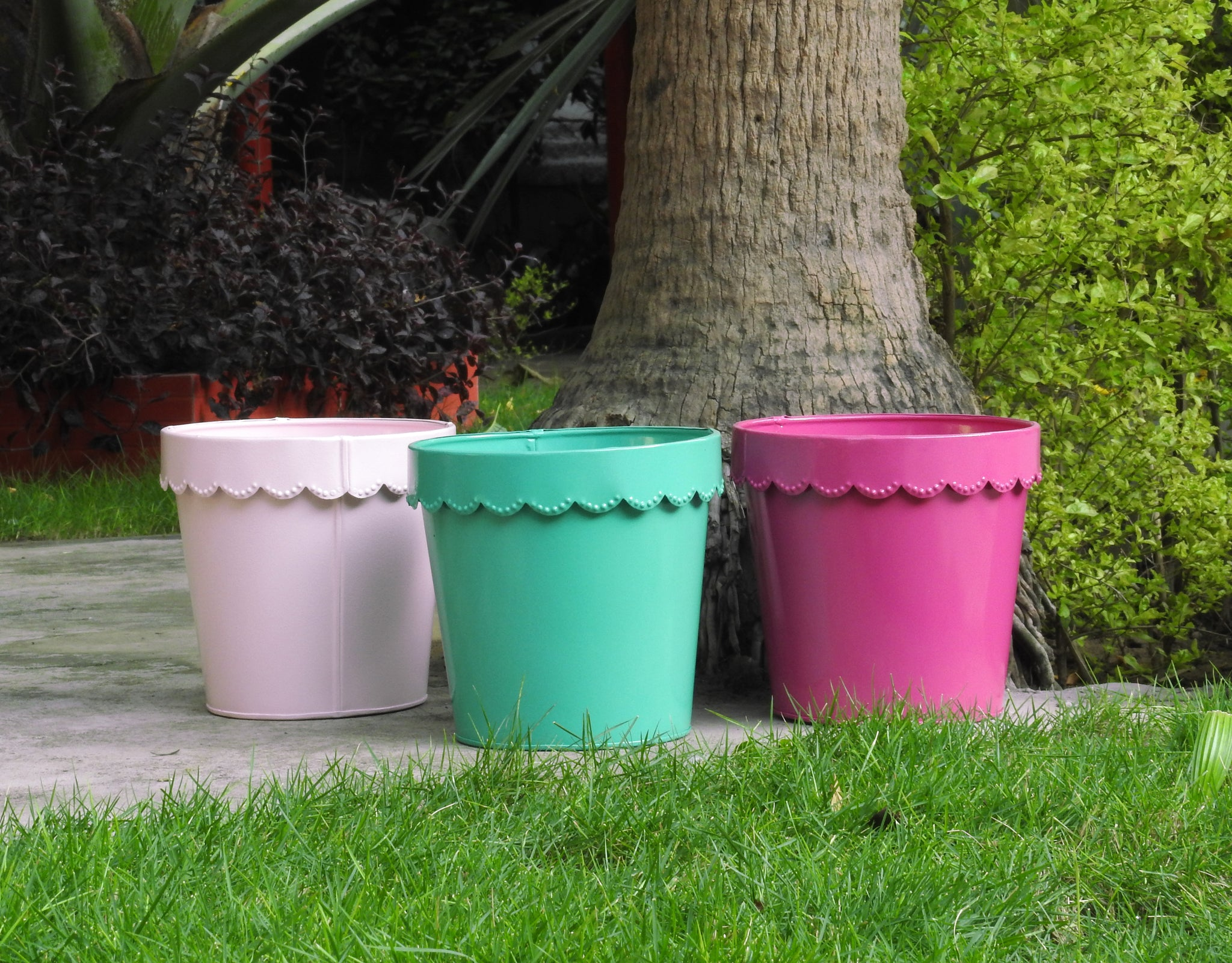 colourful-pots-for-indoor-plants-online-india