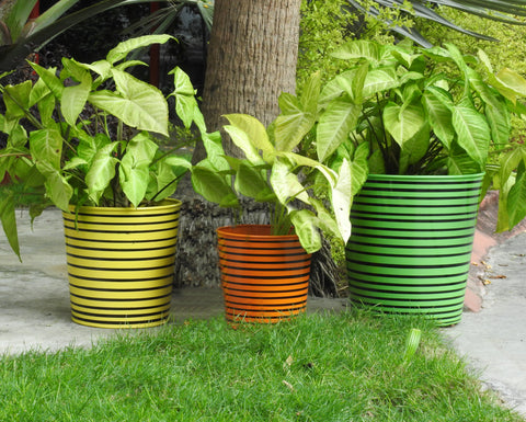 Parallel Lines Planters- Set of 3.