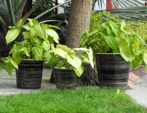 metal-pots-and-planters-online