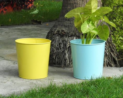 multi-coloured-planters-for-home-and-office-india