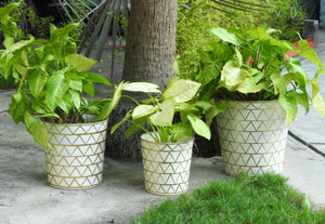 gold-and-white-metal-planter-online-India