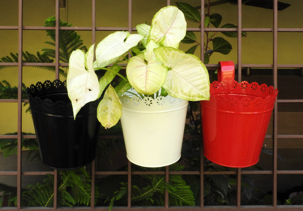 set-of-indoor-planters-with-drainage-online-India