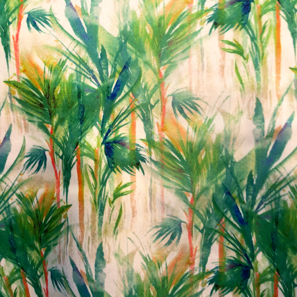 Tropical Forest Top