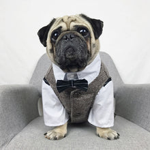 Load image into Gallery viewer, Luxury Formal Dog Clothes
