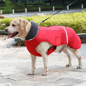 Cosy Waterproof Outdoor Jacket