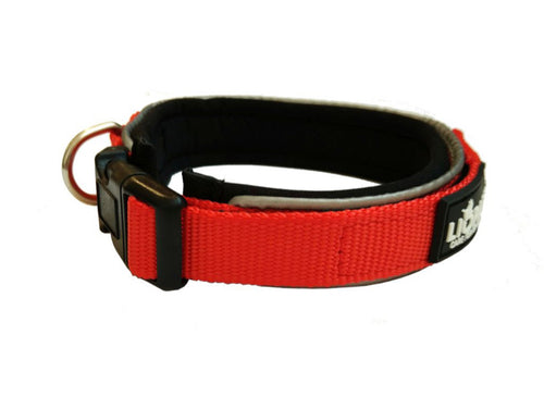 Red Padded Collar & Lead Set - Can Buy Individually