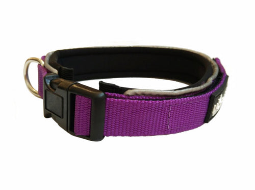 Purple Padded Collar & Lead Set - Can Buy Individually