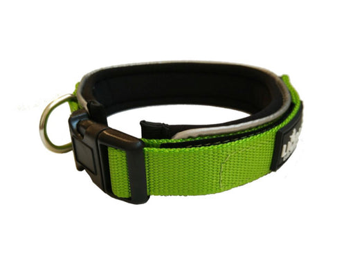 Green Padded Collar & Lead Set - Can Buy Individually