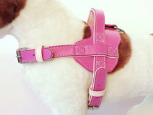 Load image into Gallery viewer, Leather Harness - Various Colours Available