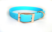 Load image into Gallery viewer, Baby Blue Biothane & Rose Gold Collar