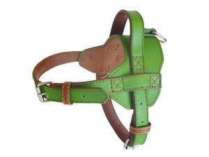 Leather Harness - Various Colours Available