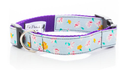 White Daisy Collar