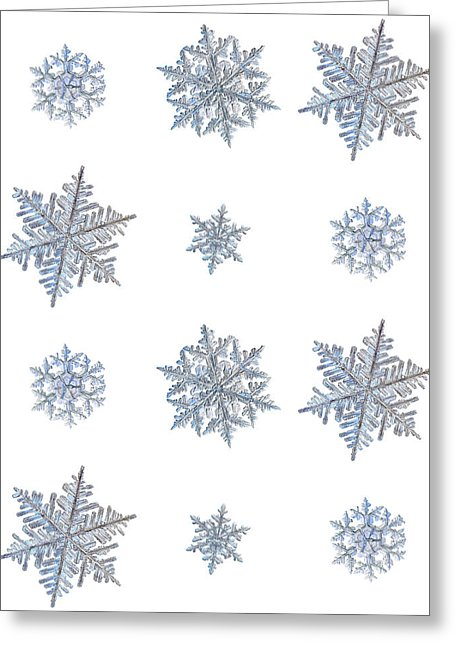 High-quality greeting cards featuring real snowflakes, captured by macro photography. The shape of a snowflake depends on the temperature and moisture in the air as the ice crystal grows and falls to the ground, giving each snowflake an individual shape and size