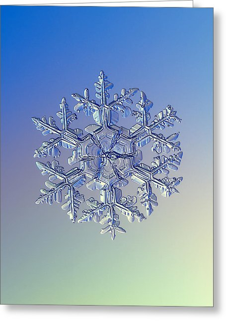 High-quality greeting cards featuring a real snowflake, captured by macro photography. The shape of a snowflake depends on the temperature and moisture in the air as the ice crystal grows and falls to the ground, giving each snowflake an individual shape and size