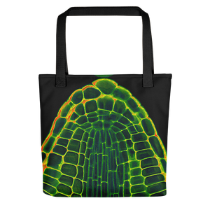 Tote bag featuring an embryonic root tip dissected from a mature seed of Arabidopsis thaliana. Cell walls were stained with a fluorescent dye and a series of images taken using laser excitation and confocal microscopy. Credit: Peter O'Toole, Joanne Marrison and Sue Bougourd, University of York, UK