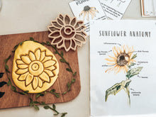 Load image into Gallery viewer, Sunflower Eco Dough Cutter