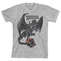 Youth Dungeons and Dragons Shirt Boys Graphic Tee