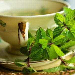 MIDNIGHT MINT Organic Spearmint Herbal Tea