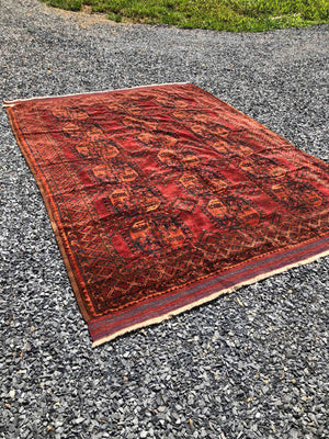 Ersari Main Carpet 311x244cm