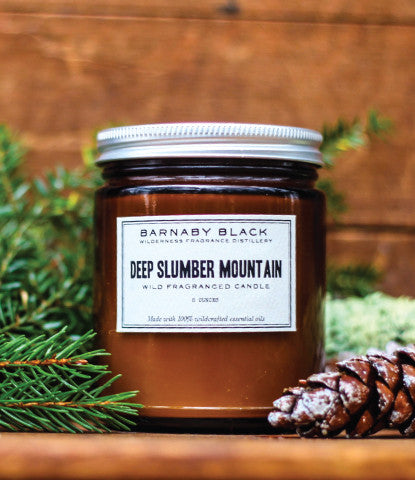 DEEP SLUMBER MOUNTAIN WILD FRAGRANCED CANDLE