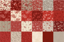 Load image into Gallery viewer, Carefree Curves in Quilts Bundle Box