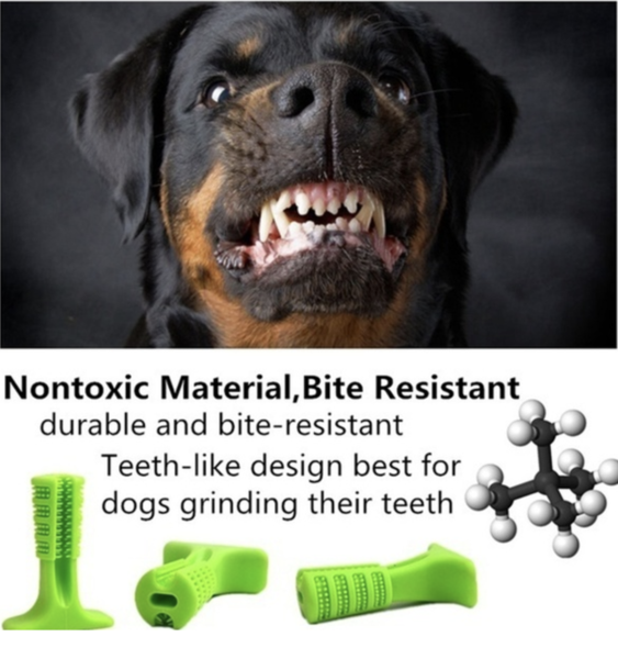 World's Most Effective pet Dog Toothbrush