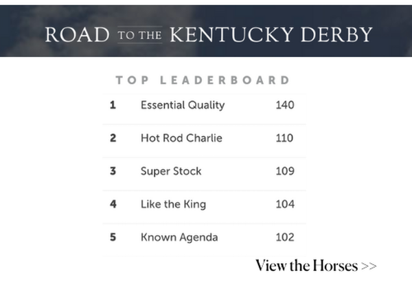Road to the Kentucky Derby! The top leaderboard of horses!