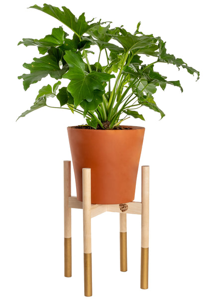 Modern Plant Stand Gold, Large