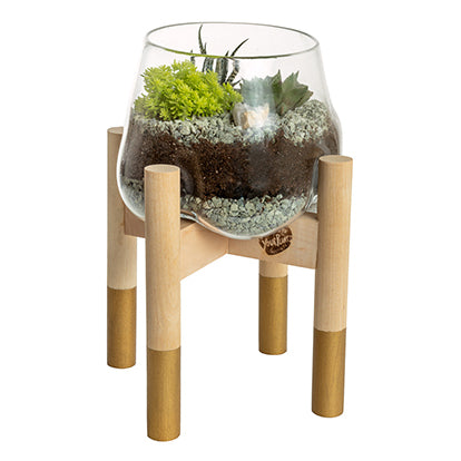 Terrarium and Gold Modern Stand, Large