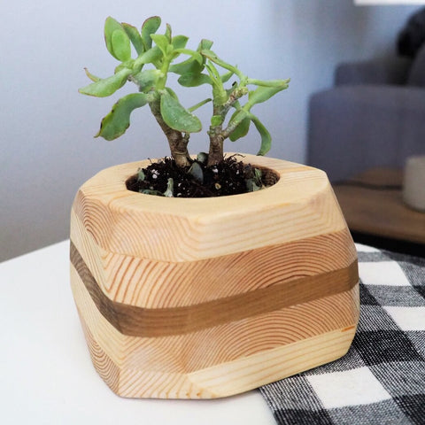 MJ Indoor Wood Planter, Medium