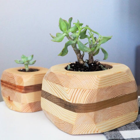 Indoor Wood Planter, Set of 2