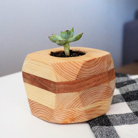 MJ Indoor Wood Planter, Small