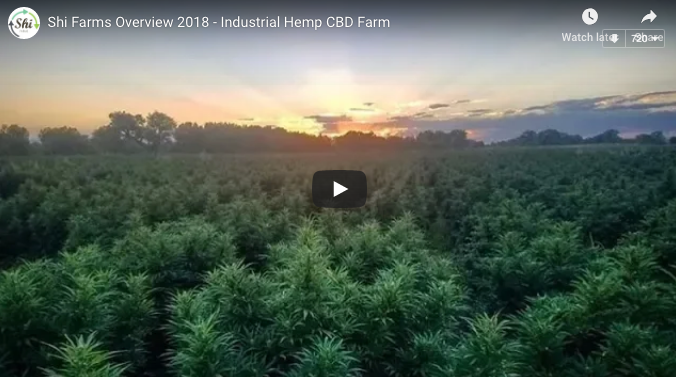 Shi Farms Overview 2018 - Industrial Hemp CBD Farm