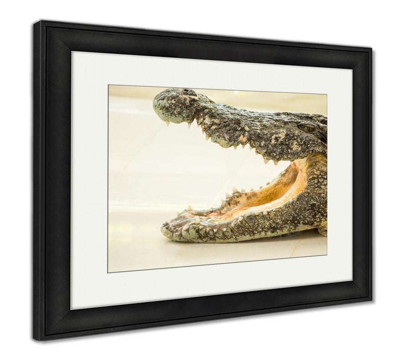 Framed Print, Dangerous Crocodile Open Mouth In Farm In Phuket Thailand Alligator In Wildlife