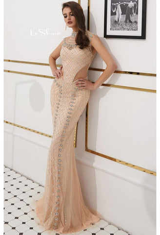 Image of Mermaid Prom Dresses Stunning Sheer Neckline with Rhinestones Embellished Tulle - 1