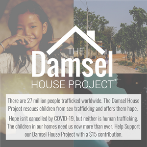Damsel House Contribution