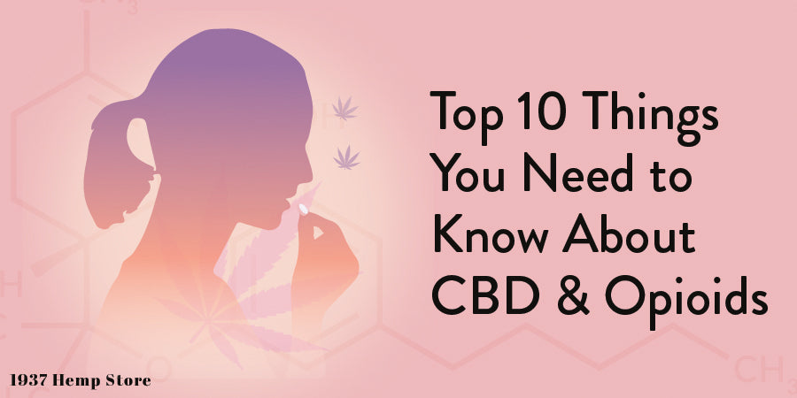 Top 10 Things You Need to Know About CBD & Opioids