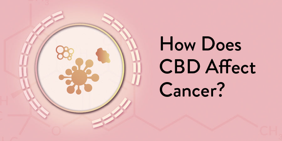 CBD affect Cancer