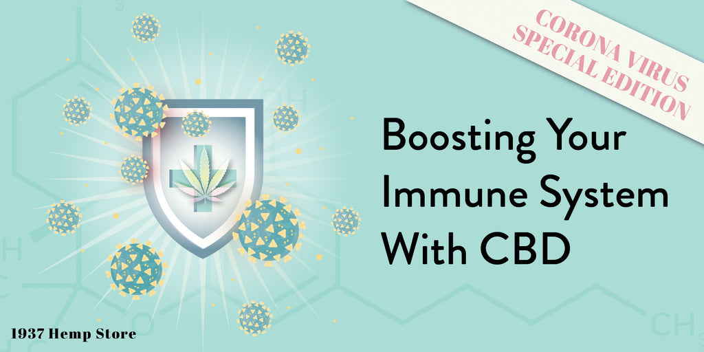 Boosting Your Immune System with CBD: Coronavirus Edition