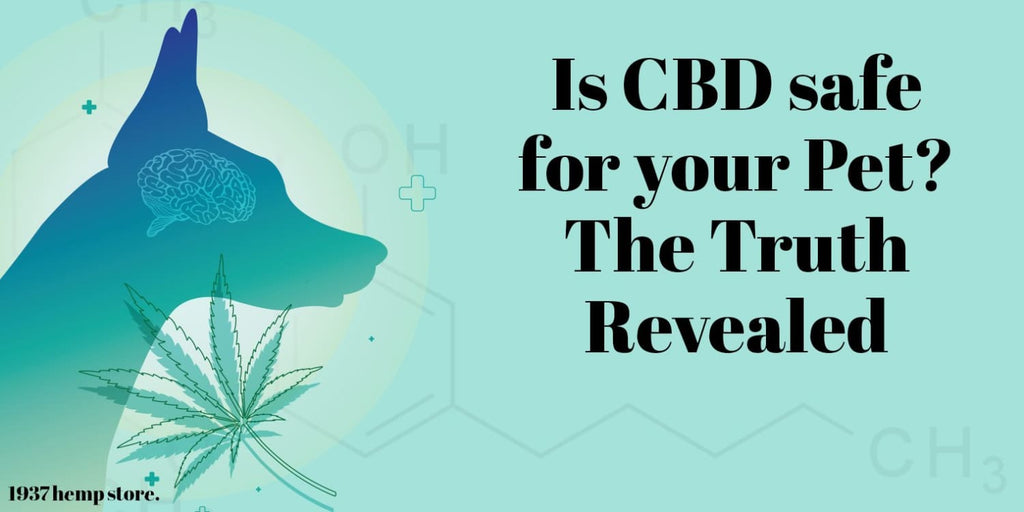 Is CBD safe for your Pet? The Truth Revealed
